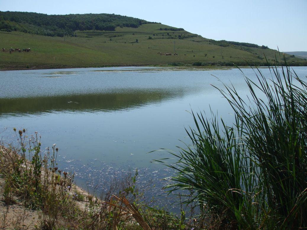 Lacul piscicol Suatu